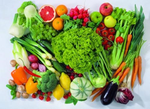 Nhà kính trồng rau hữu cơ1